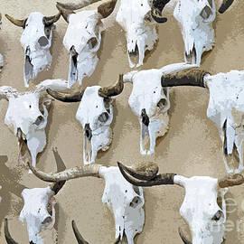 Joe Jake Pratt - Ghost Herd On The Wall