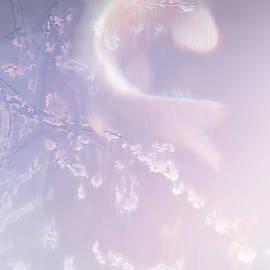 Robert Conway - Ghost Koi Rising