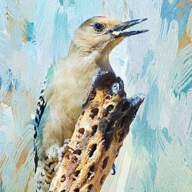 Gila Woodpecker by Barbara Manis