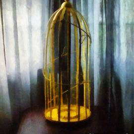 RC deWinter - Gilded Cage