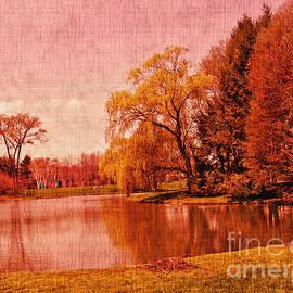 Glory of the Autumn Light by Carol F Austin