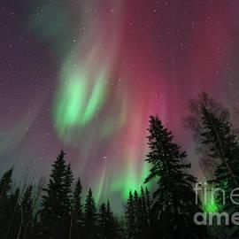 Glowing Skies by Priska Wettstein