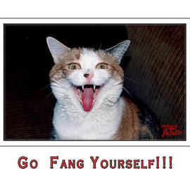 Joe Paradis - Go Fang Yourself