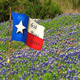 God Bless Texas Bluebonnets by Lisa Reid
