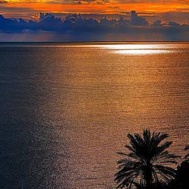 Golden Bay Sunset by Tomasz Dziubinski