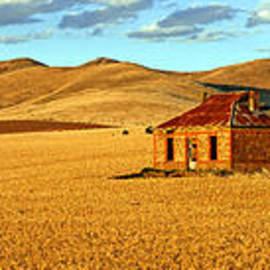 Bill  Robinson - Golden Harvest panorama