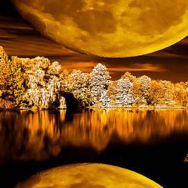 David Stine - Golden Moon Pond