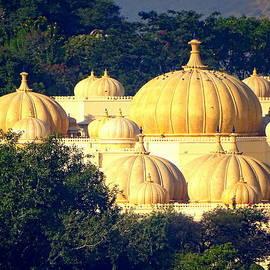 Sue Jacobi - Golden Pumpkins Udaipur Lake Architecture Rajasthan India