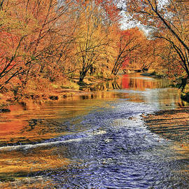 Golden Reflections by Marcia Colelli