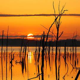 Roger Becker - Golden Sunrise