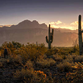 Saija  Lehtonen - Good Morning Arizona