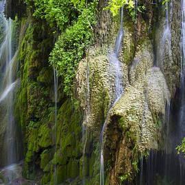Gorman Falls by Mark Weaver