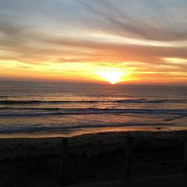 Graceful San Diego Sunset by Angela Bushman