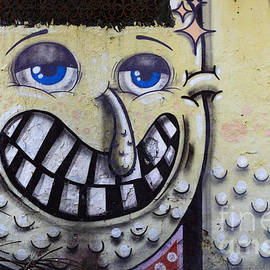 Graffiti Art Buenos Aires 1 by Bob Christopher