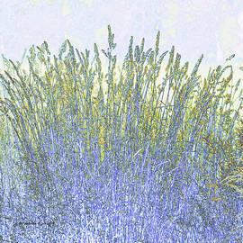 Paulette B Wright - Grains