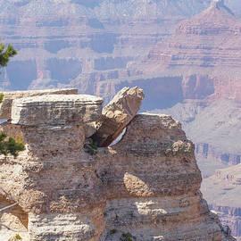 David Nichols - Grand Canyon 2