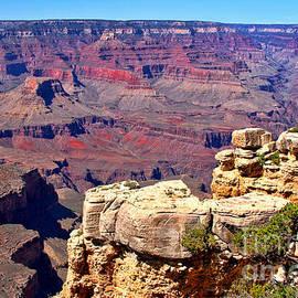 Diana Sainz - Grand Canyon of Red by Diana Sainz