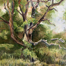 Janet Felts - Grand Old Tree