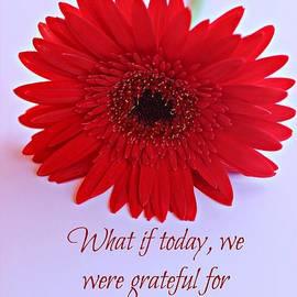 Clare Bevan - Grateful