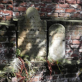 Patricia Greer - Grave Stones with Fern
