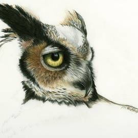 Heather Mitchell - Great Horned Owl