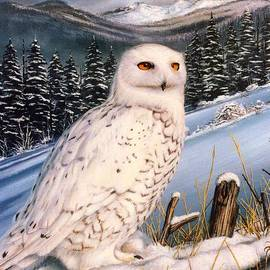 Mike Roberts - Great Snow Owl