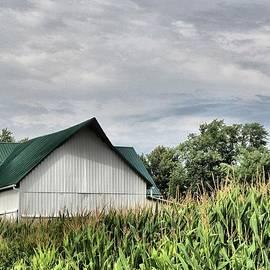Dan Sproul - Green Barn