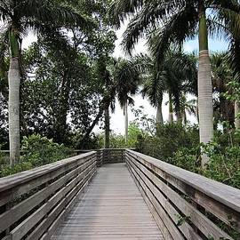 Green Cay Nature Preserve by MTBobbins Photography