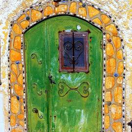 Green Tin Door by Noa Yerushalmi