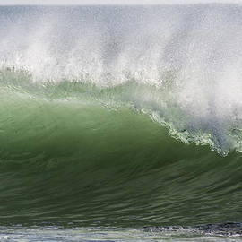 Green Wave by Bruce Frye