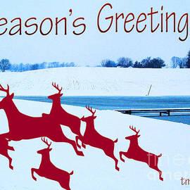 Tina M Wenger - Greetings Eight