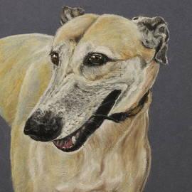 Jeanne Fischer - Greyhound