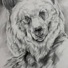 Derrick Higgins - Grizzly