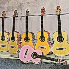 Erika Weber - Guitars