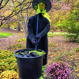 Halloween Witch by Thomas Woolworth