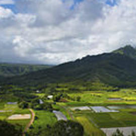 Brian Harig - Hanalei Valley Panorama - Kauai Hawaii
