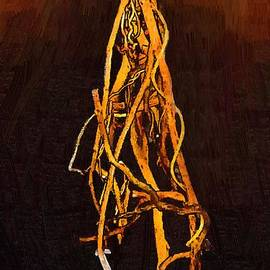 Hanged Man's Heart by RC DeWinter