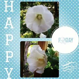 #happy #friday #instaframe