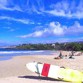 Hapuna Beach Hawaii by Jerome Stumphauzer
