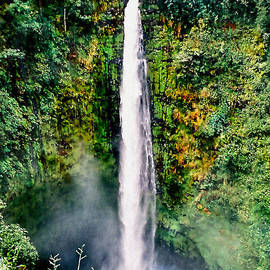 Adam Olsen - Hawaiian Waterfall