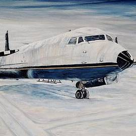 Hawker - Waiting out the storm by Marilyn  McNish