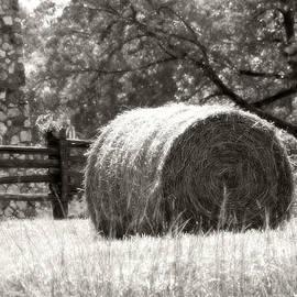 Heather Allen - Hay Bale In A Farm Field