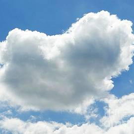 Karin Ravasio - Heart in the clouds
