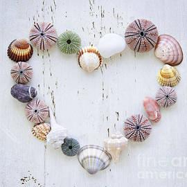 Elena Elisseeva - Heart of seashells and rocks