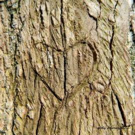 Kathy Barney - Heart of the Tree