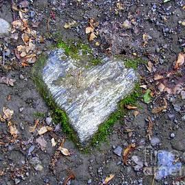 Elizabeth Dow - Heart Rock