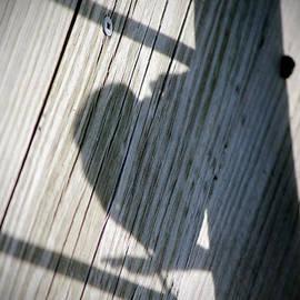 Cynthia Guinn - Heart Shadow