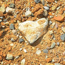 Debra Thompson - Heart Shaped Rock