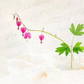 Sarah-fiona  Helme - Hearts and Music