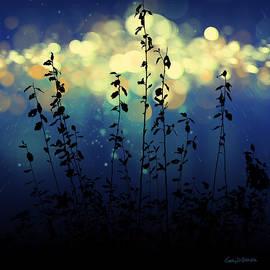 Gary D Baker - Heavenly Lights